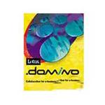 LOTUS Domino (1Domino Server+1Designer+20Notes Client) 办公软件/LOTUS
