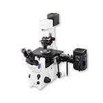 奥林巴斯IX71 显微镜/奥林巴斯