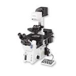 奥林巴斯IX81 显微镜/奥林巴斯