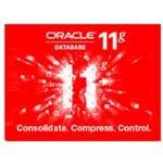 ORACLE 11g 标准版 数据库和中间件/ORACLE