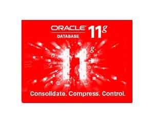 ORACLE 11g 标准版图片