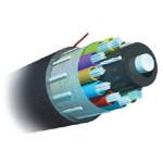 AMP 室外用万兆绝缘型光缆8-1664224-5 光纤线缆/AMP