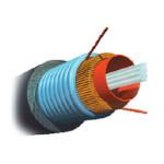 AMP 室外铠装型多模光缆6芯AMP1-1664165-5 光纤线缆/AMP