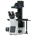 奥林巴斯IX73 显微镜/奥林巴斯