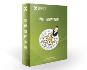 兴元X/3费用管控系统图片