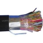 大唐保镖 DT2900-300(300对大对数) 光纤线缆/大唐保镖