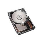 IBM 硬盘73.4GB/10K/SAS/3.5
