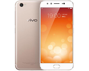 vivo X9 Plus(64GB/全网通)