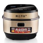九阳JYF-40FY1 电饭煲/九阳