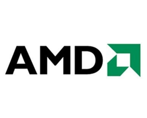 AMD Ryzen 5 4600U图片
