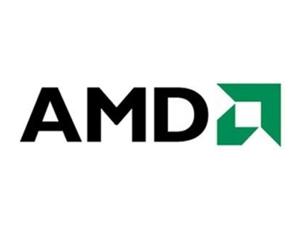 AMD Ryzen 3 PRO 4300U图片