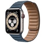 苹果Apple Watch Edition Series 6 44mm(GPS+蜂窝网络/钛金属表壳/皮制链式表带) 智能手表/苹果