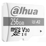 大�AP100(256GB) �W存卡/大�A