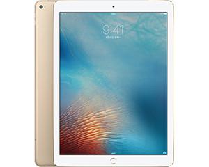 苹果12.9英寸iPad Pro(128GB/Cellular)