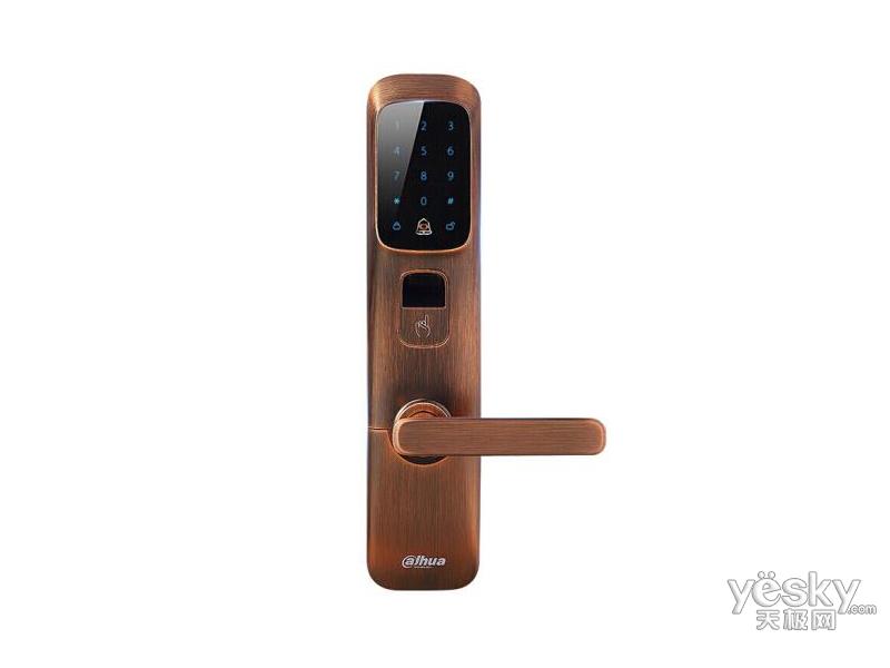 大华DH-ASL8112R