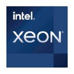 英特尔Xeon W-1390 CPU/英特尔