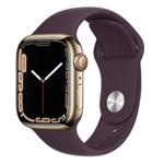 苹果Apple Watch Series 7 45mm(蜂窝款/不锈钢表壳/运动表带) 智能手表/苹果